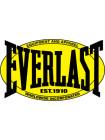 Комплект наклеек Everlast (3 шт)